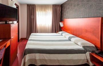Camera singola con letto matrimoniale Hotel Nuevo Torreluz